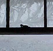 [frost, window latch]